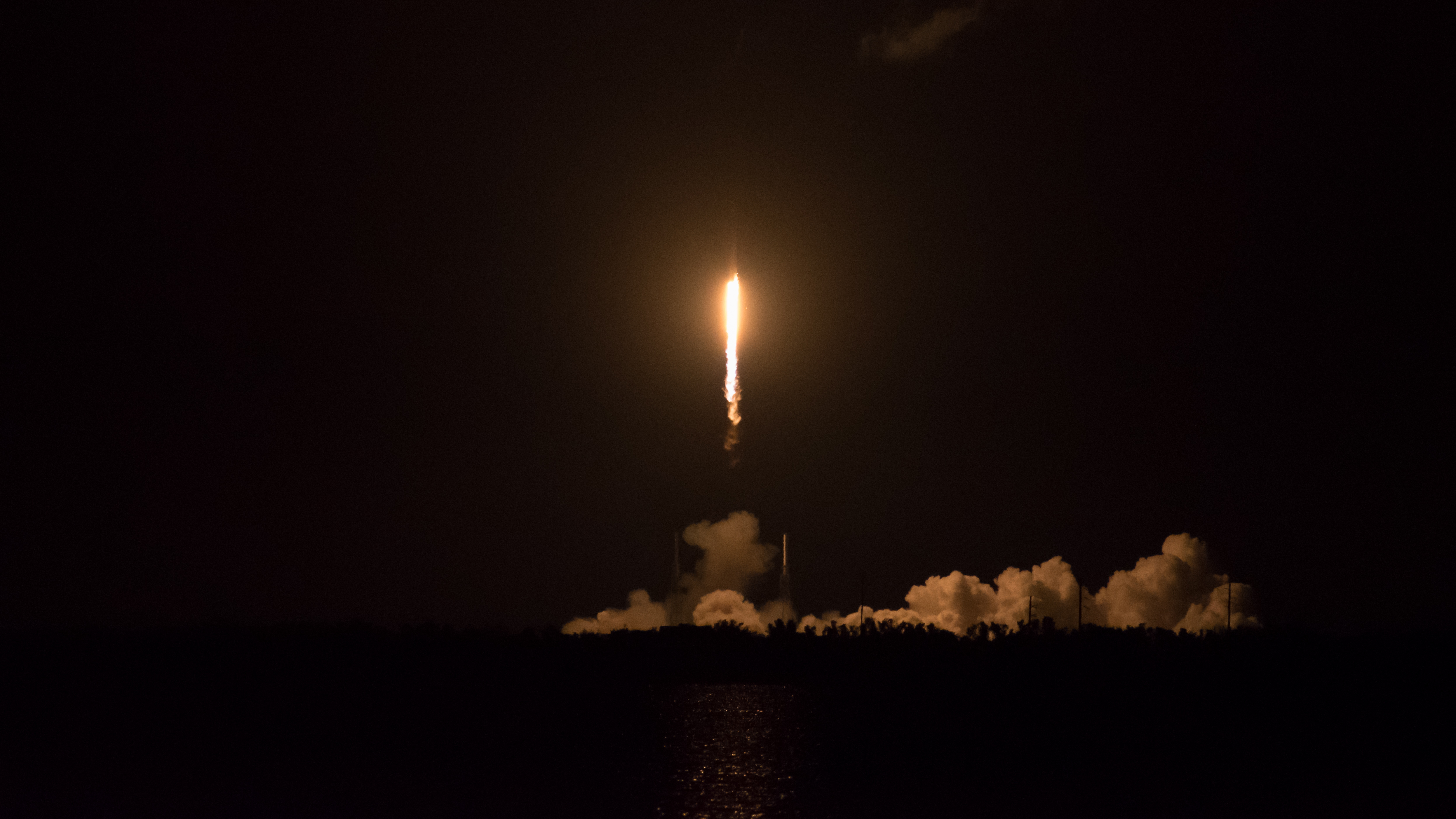 SpaceX CRS-15, 29th June 2018 – Launch Rats